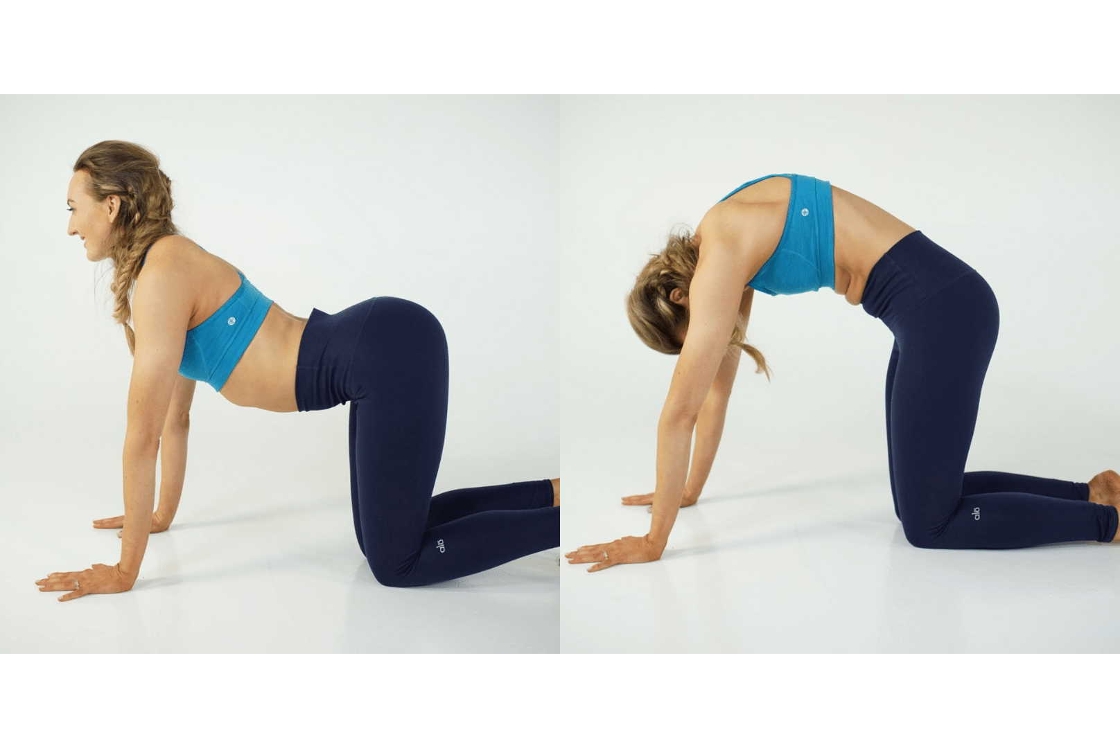 Cat / Cow Pose - Marjariasana / Bilasana
