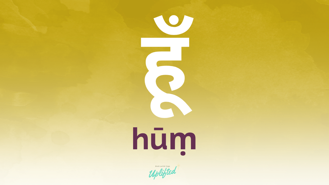 hum meaning